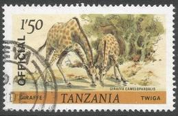 Tanzania. 1980 Wildlife. 1/50 Used. SG 314 - Tanzania (1964-...)
