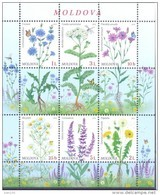 2016. Moldova, Flora Of Moldova, Wild Flowers,  S/s, Mint/** - Moldavia