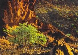 Namibia - Landscapre Near Twyfeltontein - Namibia