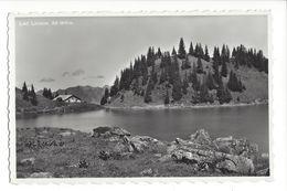 19621 - Lac Lioson - VD Vaud