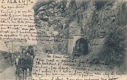 MASSIF DE LA GRANDE CHARTREUSE - N° 217 - LES GORGES DE CHAILLES (ATTELAGE + TRAIN) - Non Classés