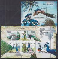F06. Comores - MNH - Animals - Birds - Vögel