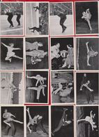 Kosmos Zigaretten - 16 X Jeux Olympiques Oslo 1952 - Cigarette Cards