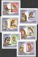 A480 !!! IMPERFORATE 2010 GUINE-BISSAU FAUNA BIRDS OWLS MOCHOS 6 LUX BL MNH - Owls