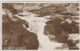Postcard - Bolton Woods, The Strid - Card No. 6031 - VG - Unclassified
