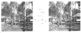 PP 10 - JEUX OLYMPIQUES DE MUNICH 1936 Une Rue Dans Le Village Olympique - Glass Slides