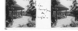 PP 14 - JEUX OLYMPIQUES DE MUNICH 1936 Village Olympique Le Champignon Du Café - Glass Slides