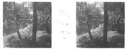 PP 15 - JEUX OLYMPIQUES DE MUNICH 1936 Etang Dans Le Village Olympique - Glass Slides