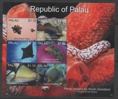 PALAU,2013,MNH, MARINE LIFE IV, FISH,RAYS, TURTLES, SUPERB PHOTOS, SHEETLET, NICE! - Poissons