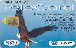 Namibia - Telecom Namibia - African Fish Eagle Bird - 20$, 1999, Used - Namibia