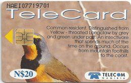 Namibia - Telecom Namibia - Bokmakierie Bird - 20$, 1999, Used - Namibia