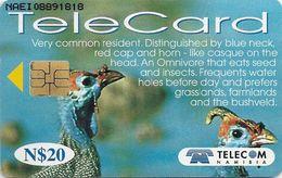 Namibia - Telecom Namibia - Helmeted Guineafowl Bird - 20$, 1999, Used - Namibia