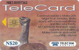 Namibia - Telecom Namibia - Kori Bustard Bird - 20$, 1999, Used - Namibia