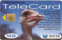 Namibia - Telecom Namibia - Ostrich Bird - 20$, 1999, Used - Namibia