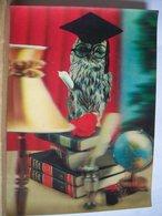 3D - Stereoscopiche - Tridimensionale - Civetta Con Libro - Cartoon Avvocato   - 2 Scans. - Cartoline Stereoscopiche