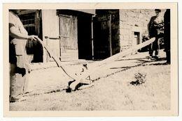 MEYRUEIS- PHOTO ANCIENNE FORMAT CPA 9X14CM  PRESENTATION DE L'ARAIRE (charrue) - Meyrueis