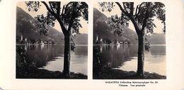 Collection Stéréoscopique GALACTINA N°25 / VITZNAU (Lucerne)  Suisse Vue Générale  -photos Stéréoscopiques NPG 1906 - Stereoscopic