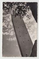 Real Photo - Written In 1960 - Algérie Algeria - El Goléa Mosquée - By Petremant - VG Condition - Written - 2 Scans - Algeria