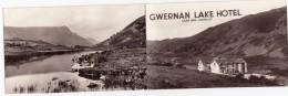 Wales UK Hotel Advertisement, Gwernan Lake Cader Idris Dolgelley, C1960s Vintage Card - Advertising