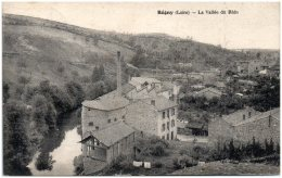 42 REGNY - La Vallée Du Rhin - Frankrijk