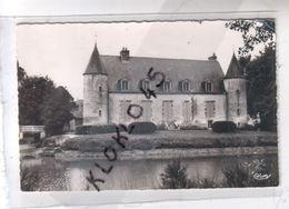 45 FEROLLES  ( Loiret - Le Château - Vue De Profil Pris De L'étang En été - CPSM Cim N° 202 - Other Municipalities
