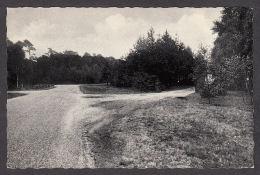 84617/ SCHILDE, Hof Ter Linde - Schilde