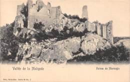 Vallée De La Molignée - Ruines De Montaigle - Onhaye