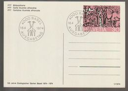 T 116) Schweiz 1974 BiPo Mi# P 235 FDC: 100 J. Zoologischer Garten Basel Giraffe Nashorn Elefant Gepard - Giraffen