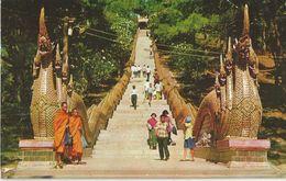 MAIN STAIR TO CLIMB ON THE PHURA THAI DOI-SUTHEP MOUNTAIN IN CHIENG-MAI IN NORTH THAILAND  (10) - Tailandia