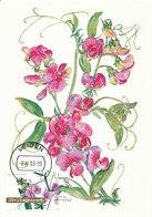 D33021 CARTE MAXIMUM CARD FD 2003 NETHERLANDS - LATHYRUS FLOWERS CP ORIGINAL - Autres