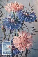 D33036 CARTE MAXIMUM CARD 1959 FINLAND SUOMI - FLOWERS CENTAUREA TUBERCULOSIS CP ORIGINAL - Finland