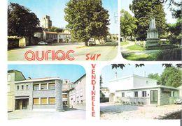 D 31  AURIAC Sur VENDINELLE   Multivues - France