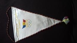 1708   ROMANIA  ORIGINAL  OLIYMPIC   FLAG   44 X 30 CM - Uniformes Recordatorios & Misc