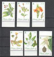 A628 PITCAIRN ISLANDS FLORA FLOWERS 1SET MNH - Plants