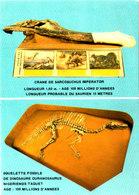 REPUBLIQUE DU NIGER MUSEE NATIONAL Fossile Dinosaure Cpsm 15X105 Bon état Voir Scans - Niger