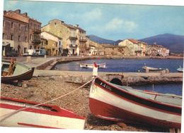 Macinaggio .  Le Port  . Neuve . - Other Municipalities