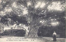 -- 94 --   LE PARC SAINT MAUR -- LE GRAND CHÊNE -- ANIMATION -- 1924 - Saint Maur Des Fosses