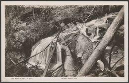Olinda Falls, Melbourne, Victoria, C.1930 - Rose Series RP Postcard - Melbourne