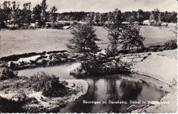 1947170Beuningen Bij Denekamp, Dinkel In  T Lutterzand  1958 - Andere