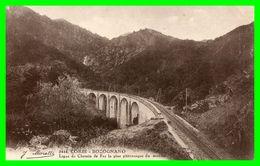 CORSE BOCOGNANO Ligne De Chemin De Fer La Plus Pittoresque Du Monde - France