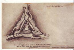 CPA - LUXEUIL LES BAINS - Les Trois Lapins De La Maison Du Cardinal Jouffroy - Luxeuil Les Bains