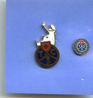 2 Pin' S - TCS - Touring Club Suisse - Automobile - Pin's