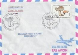 Lot De 10 Lettres Voyagées Dont PA De 1990 - Collections, Lots & Séries