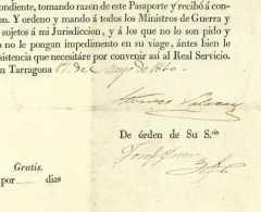 GUERRE D'ESPAGNE – PASSEPORT Tarragona 1810 Catalunya General De MONTES SALAZAR Villafranca Catalanes - Historische Dokumente