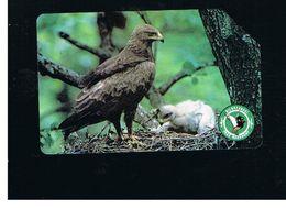 POLONIA (POLAND) - TP  - BIRDS: AQUILA POMARINA  - USED - RIF. 10254 - Aquile & Rapaci Diurni