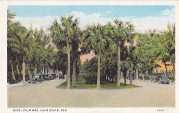 Royal Palm Way - Palm Beach, Fla - Palmiers, Circulation Automobile - Pas Circulé, Couleur - Palm Beach