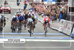 Ciclismo, Cyclisme, Cycling. Cartolina Col. Peter SAGAN - Ciclismo