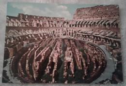 Roma - Colosseo Con Nuovi Scavi - Colosseo