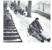 CPM -  Neige à Paris, Février 1956. La Glisse Des Poulbots.  Cliché  Edimédia- Universal Photo - Photographs