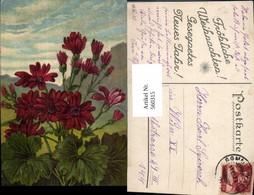 560315,Künstler Ak Rote Blume Landschaft - Botanik